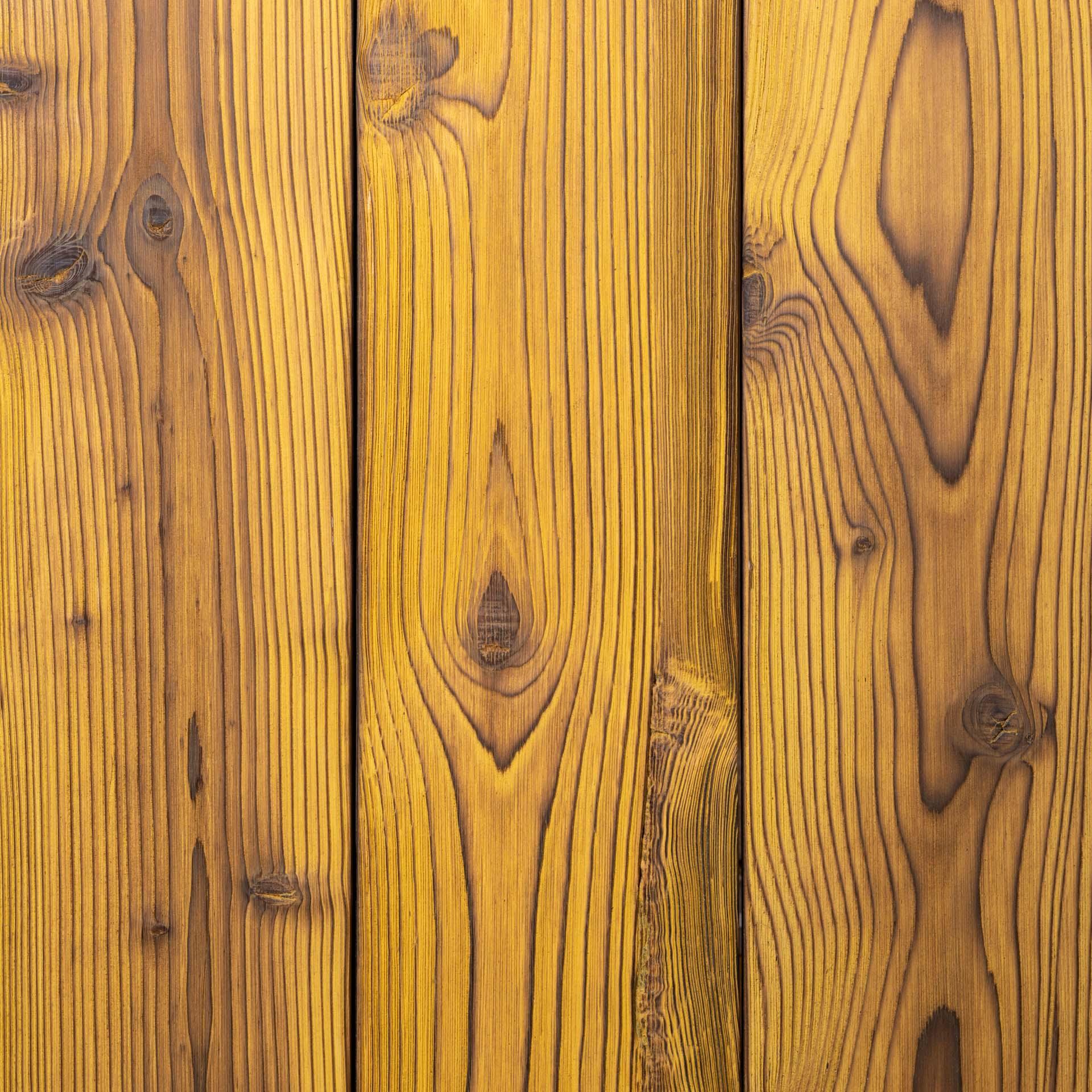 Melemele <br>(Northwestern Spruce)